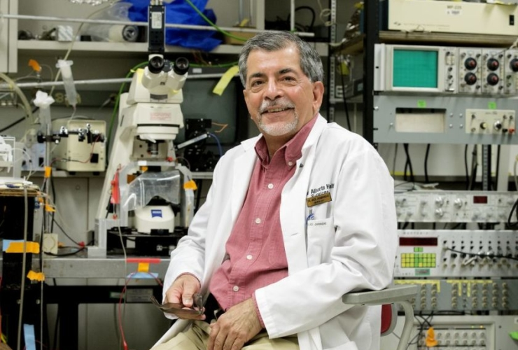 Treating Alzheimer's: U of A research closes in on possibility.